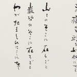 52chiku D001 iiyama